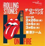 stonestour2014.jpg