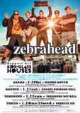 zebrafead20120122.jpg